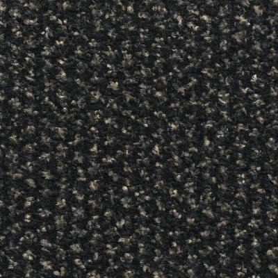 Textil-Belag Sauberlauf Alba PC, Bahnen