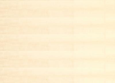 Spanplatte furniert 19mm Birke A/B